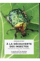 A la decouverte des insectes