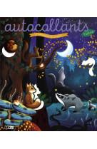 Autoc nature animaux de nuit